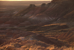 Old RT 66 2008 Painted Desert late day