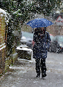 © Licensed to London News Pictures. 14/01/2013. Amersham, UK A woman walks with an umbrella. People and snow in Amersham in south-east Buckinghamshire. Snow hits the many parts of the UK today 14th January 2013. Photo credit : Stephen Simpson/LNP