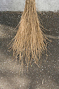 twig broom on asphalt