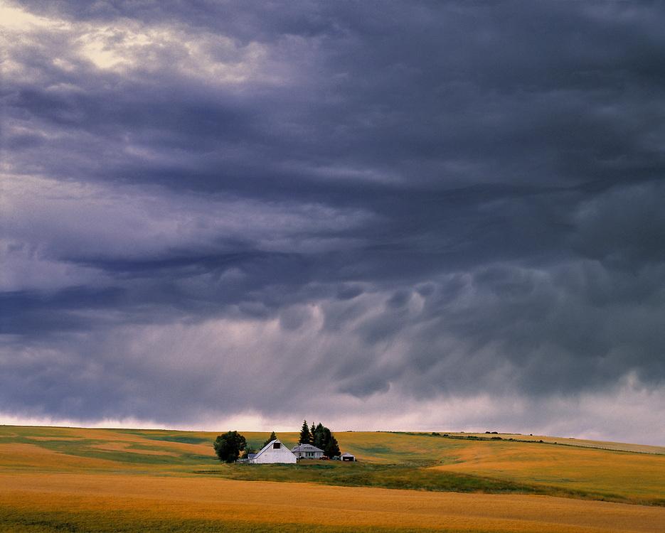 Rippling storm clouds gather over a small farm, in La Grande, Union County, Oregon. ©Ric Ergenbright