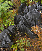 Karst formation on Takaka Hill, South Island, New Zealand