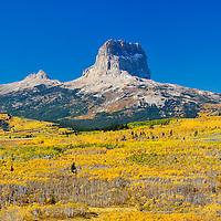 chief mountain fall leaves and stunning colors glacier national park, blackfeet indian reservation,