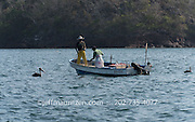 Panamanian fishermen on a small boat haul in nets along the coast of Bona Island, located in Panama Bay.