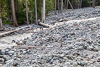 Hikers crossing the Carbon river, Mount Rainier National Park, Washington, USA.