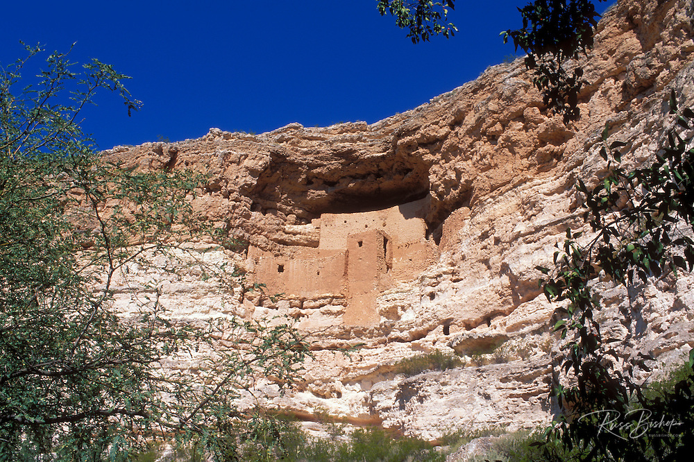 Morning light on Montezuma Castle Ruins (Sinagua Indians), Montezuma Castle National Monument, Arizona.