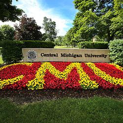 Summer CMU Campus Scenics
