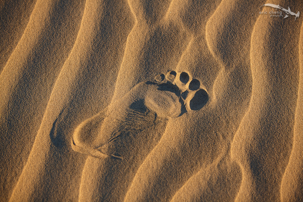 A footprint at Mesquite Dunes, Death Valley, California