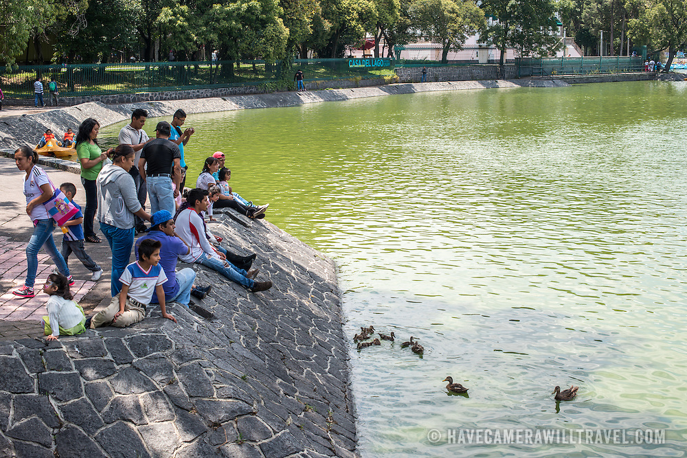 People relax on the lake bank feeding ducks in Basque de Chapultepec, a large and popular public park in the center of Mexico City.