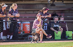 New Mexico vs. Texas A&M in a NCAA softball game Feb. 18th, 2017, in College Station, Texas.