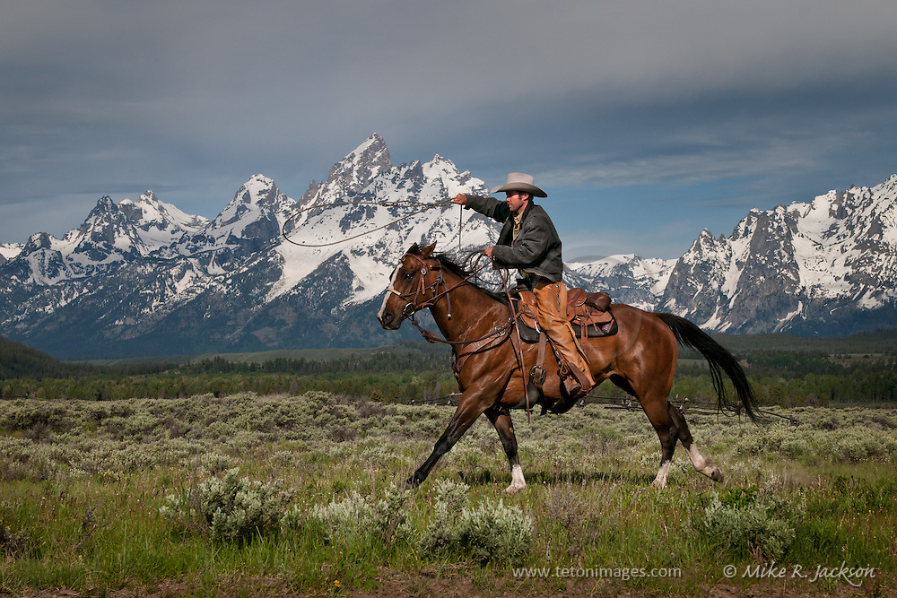 Wrangler and horse galloping in front of the Grand Teton peaks in Jackson Hole, WY.