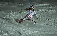 Cliff Nyquist Memorial Slalom at Gunstock Ski Club February 19, 2013.