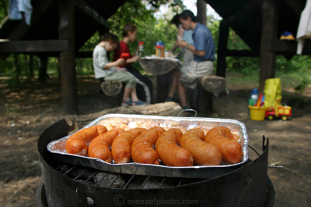 A family sits down to eat a meal of barbecued pork during an outing in Warsaw, Poland. (Supporting image from the project Hungry Planet: What the World Eats.)