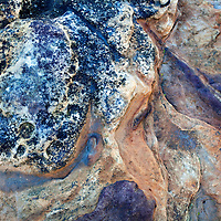 Colourful Rock Detail on the Fife Coast near St Andrews