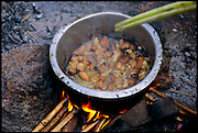 Stirred with a palm leaf stem, palm grubs, or Capricorn beetle larvae, are sautéed in their own oil over a fire. Uganda. (Man Eating Bugs page 143 Inset, grubs being cooked by Joseph Kawunde). Joseph Kawunde, 56, a former Ssese Islander, is one of few in his mainland village of Bweyogerere who enjoys the cuisine of masinya, or palm grub (the larvae of the Capricorn beetle); the other villagers curiously watch as he prepares the foreign dish of masinya worms cooked with salt, curry, and yellow onions. Bweyogerere, Uganda.