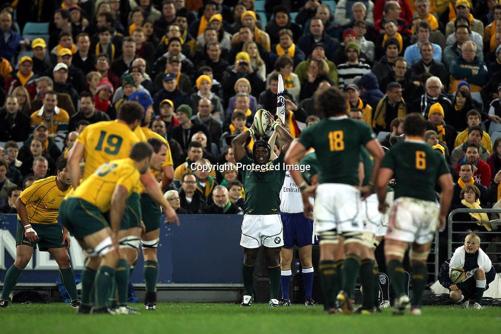 Australia Wallabies v South Africa Springboks. Sport International Representative Rugby Union. ANZ Stadium. 23 July 2011. Photo Paul Seiser/Seiser Photography