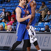 BYU alumni JIMMER FREDETTE (16) and Westchester Knicks Forward THANASIS ANTETOKOUNMPO (43) @Thanasis_ante43 celebrate in the second half of a NBA D-league regular season basketball game between the Delaware 87ers and the Westchester Knicks Tuesday, JAN, 19, 2016 at The Bob Carpenter Sports Convocation Center in Newark, DEL