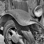 Old Ford Reclaimed By Nature - Motor Transport Museum - Campo, CA - Black & White