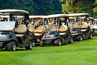 The golf carts are ready for a group shotgun start at the Whistler Golf Club