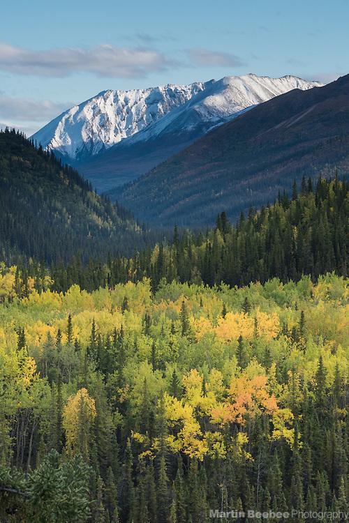 Fall colors below mountains, Denali National Park, Alaska