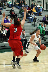 10 January 2015:  Amanda Kelly works outside defended by Alexis Hahn during an NCAA women's division 3 CCIW basketball game between the Carthage Reds and the Illinois Wesleyan Titans in Shirk Center, Bloomington IL