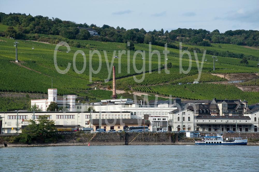 Asbach Fabrik, Rüdesheim, Rheingau, Oberes Mittelrheintal, Hessen, Deutschland | Asbach Distillery, Ruedesheim, Rheingau, Upper Middle Rhine Valley, Hesse, Germany