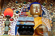 Feeding the Buddha in McLeod Ganj.