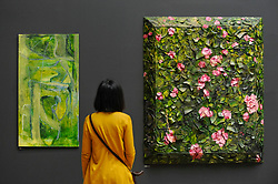 &copy; Licensed to London News Pictures. 08/06/2017. London, UK. A visitor views (L to R) &quot;Untitled&quot; by Varda Caivano (GBP19,000) and &quot;Rose Painting (Near Van Gogh's Grave) XVIII&quot; by Julian Schnabel Hon RA.  Preview of the Summer Exhibition 2017 at the Royal Academy of Arts in Piccadilly.  Co-ordinated by Royal Academician Eileen Cooper, the 249th Summer Exhibition is the world's largest open submission exhibition with around 1,100 works on display by high profile and up and coming artists.<br />  Photo credit : Stephen Chung/LNP