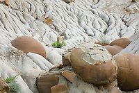 Cannonball concretions, North Unit Theodore Roosevelt National Park North Dakota USA