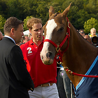 HRH Prince \William Wales plays polo at the Rundle Cup scoring a couple of important gols. One of his Polo ponies  from Highrove won the best tuned out prize. HRH   had a friendly chat with few Chealse Pensioner that were attending the match