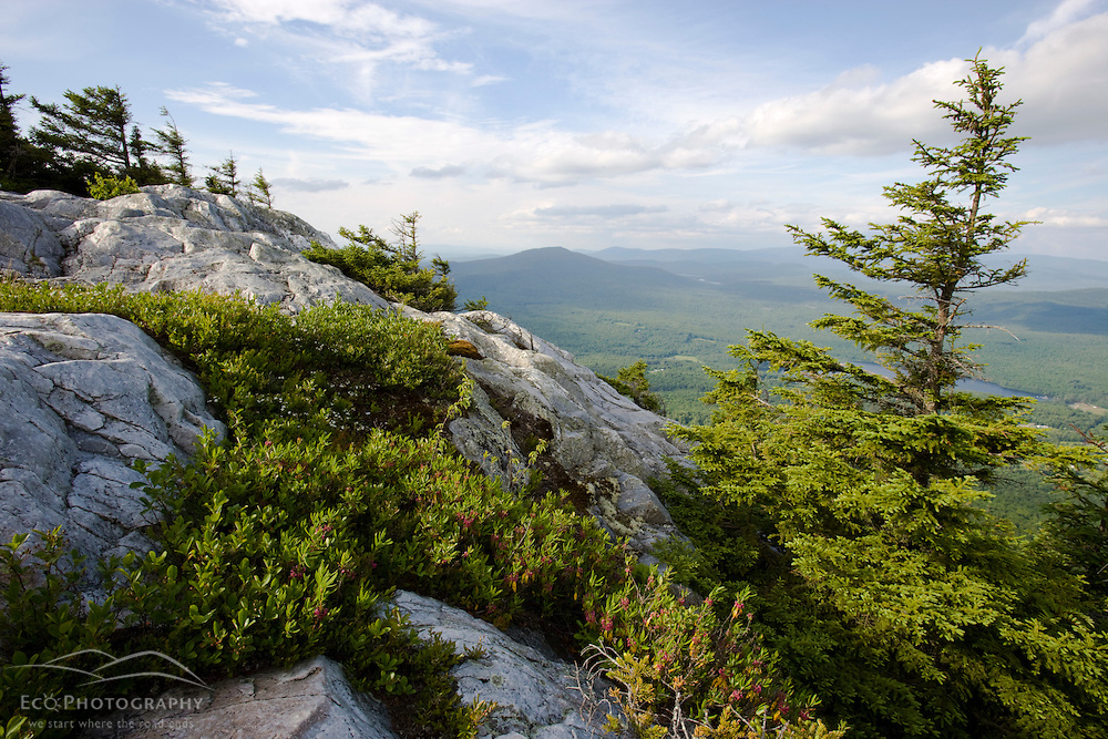 The summit of Mount Cube in Orford, New Hampshire.  Appalachian Trail.