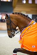 Diederik van Silfhout - Expression<br /> KNHS Indoorkampioenschappen 2017<br /> © DigiShots
