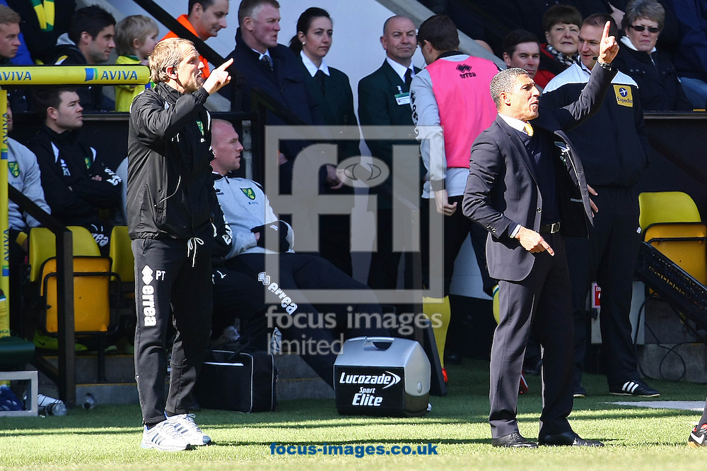 Picture by Paul Chesterton/Focus Images Ltd +44 7904 640267.06/04/2013.Norwich Manager Chris Hughton and Norwich First Team Coach Paul Trollope during the Barclays Premier League match at Carrow Road, Norwich.