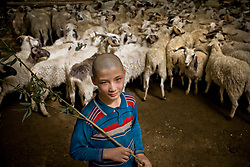 An Uyghur boy works at live stock market in Khotan, Xinjiang province in China. Khotan has one of Central Asia's biggest livestock markets, which each Thursday draws farmers and shepherds from across the region.