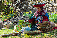 Cuzco, Peru - July 15, 2013: woman with natural dyes in the peruvian Andes at Cuzco Peru on july 15th 2013
