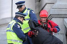 Wellington-Greenpeace protestors arrested after Parliament stint