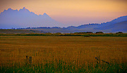 Morning sunrise over the hay fields of Jackson hole create a purple and azure morning scene set against the silhouette of the Tetons.