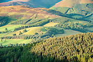 The Tweed Valley from Glentress, Tweed Valley, Forestry Commission Scotland