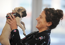 Mairi Gougeon MSP with Bella the Pug<br /> <br /> (c) David Wardle | Edinburgh Elite media