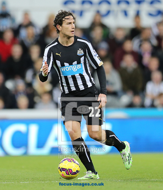 Daryl Janmaat of Newcastle United during the Barclays Premier League match at St. James's Park, Newcastle<br /> Picture by Simon Moore/Focus Images Ltd 07807 671782<br /> 01/01/2015