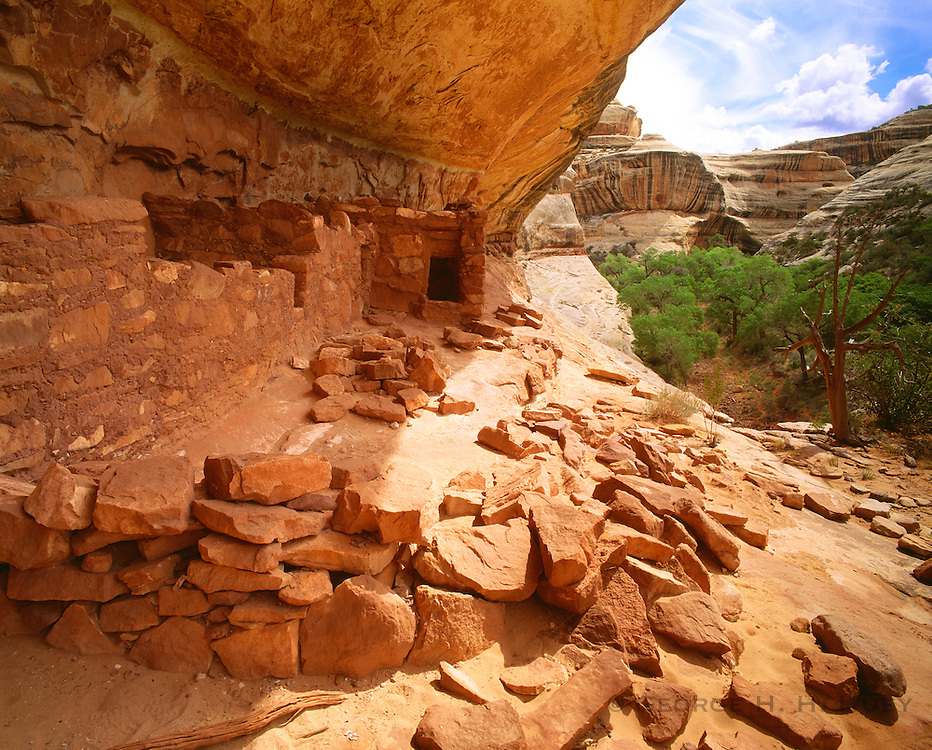 0309-1004 ~ Copyright: George H. H. Huey ~ Horsecollar Ruin. Anasazi culture dwelling, ca AD. 1200. White Canyon. Natural Bridges National Monument, Utah.