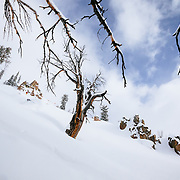Tanner Flanagan skis backcountry powder during a winter storm in the Tetons near Jackson Hole Mountain Resort in Teton Village, Wyoming. Kim Havell in the background waiting.