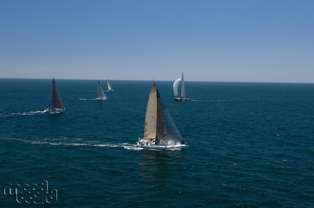 Four yachts compete in team sailing event California