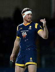 Max Stelling of Worcester Cavaliers - Mandatory by-line: Dougie Allward/JMP - 19/09/2016 - RUGBY - Sixways Stadium - Worcester, England - Worcester Cavaliers v Northampton Wanderers - Aviva A League