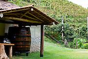 Venda Nova do Imigrante_ES, Brasil...Vinicola da Familia Tonole...Familia Tonole winery...Foto: LEO DRUMOND / NITRO