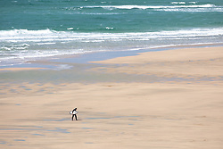 "© Licensed to London News Pictures. 11/05/2020. Newquay, UK. A surfer walks along Fistral beach on the North coast of Cornwall, the day after British Prime Minister Boris Johnson announced a 'road map' to lift lockdown restrictions due to Covid-19, (Coronavirus). A rise in ""staycations"" - the concept of holidaying in your home country rather than travelling abroad - is expected, with many visitors planning to visit Cornwall. However, an ongoing campaign titled ""#ComeBackLater"" is trying to persuade tourists not to visit the county until it is safe to do so. Photo credit : Tom Nicholson/LNP"
