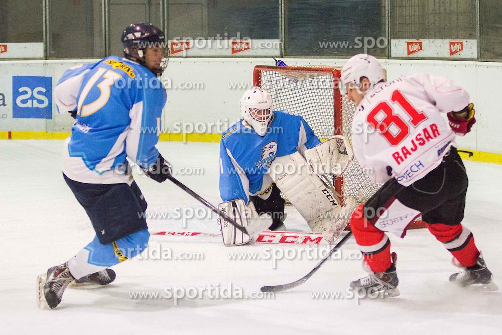 Ice-hockey match between HK Triglav Kranj  and HDD SIJ Acroni Jesenice in last game of Semifinal at Slovenian National League, on March 17, 2015 at Ledena dvorana, Kranj. Photo by Ziga Zupan / Sportida