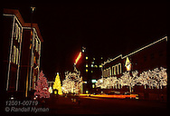 Christmas tree lights decorate the Anheuser Busch Brewery each year in downtown St. Louis. Missouri