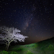 Night sky, Sahyadri Mountains, Maharashtra, India