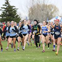 2015 NCAA Cross Country Championships: Hannah Oneda (Johns Hopkins), Tess Meehan (Johns Hopkins), Caroline Smith (Johns Hopkins) at the NCAA Division III Cross Country Championships in Winneconne, Wisconsin, on November 22, 2015.