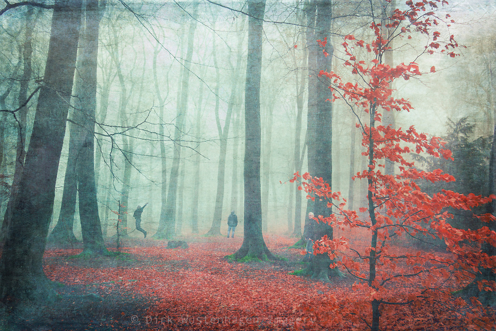 Composing of several self portrait in a misty forest scenery.